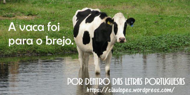 vaca ir para o brejo